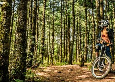 China Mountainbiking Knolly Downhill MTB Dali Yunnan